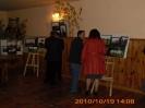 Wystawy